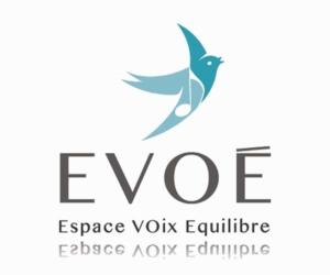 realisation-logo-evoe-300x250 realisation-logo-evoe - iStudio - Agence Web 360° à Cholet